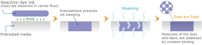 Mechanism of reactive dye ink fixation