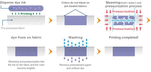 Mecanismo de fixação da Tinta Dispersa