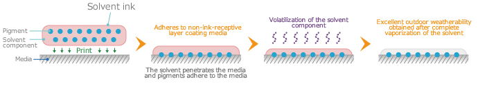 Mechanism of the solvent ink adhesion